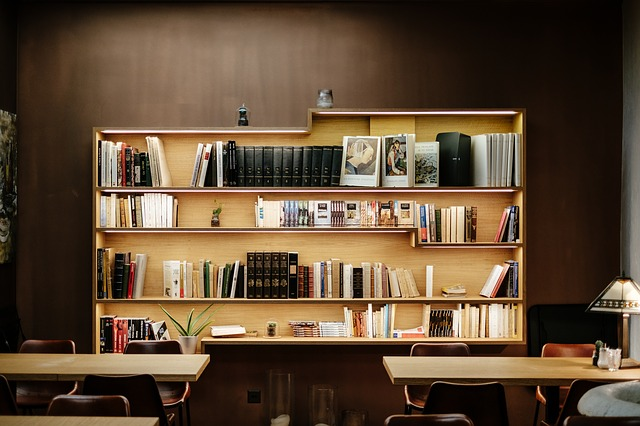 Bookshelves & Reading Nook Ideas and Inspiration