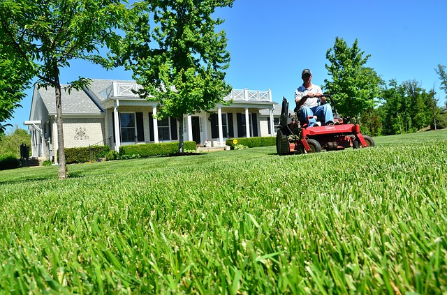 Lawn Care: 4 Tips to Prepare Your Lawn for Spring