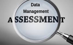 Significance of Data Management Assessment Strategy for Success