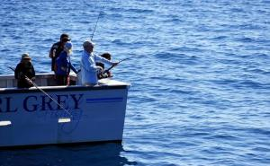 Catch More Fish with These Fishing Tips