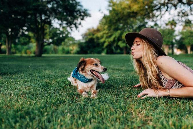 Can I Share My CBD Oil with My Dogs?